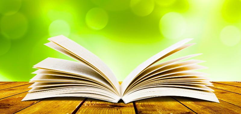 Das Buch - wie Du wirklich etwas veränderst